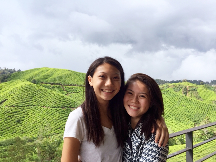 unexpected cameron highlands