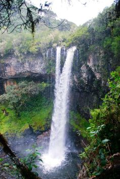 http://www.compacttravels.com/index.php/topics/kenya/
