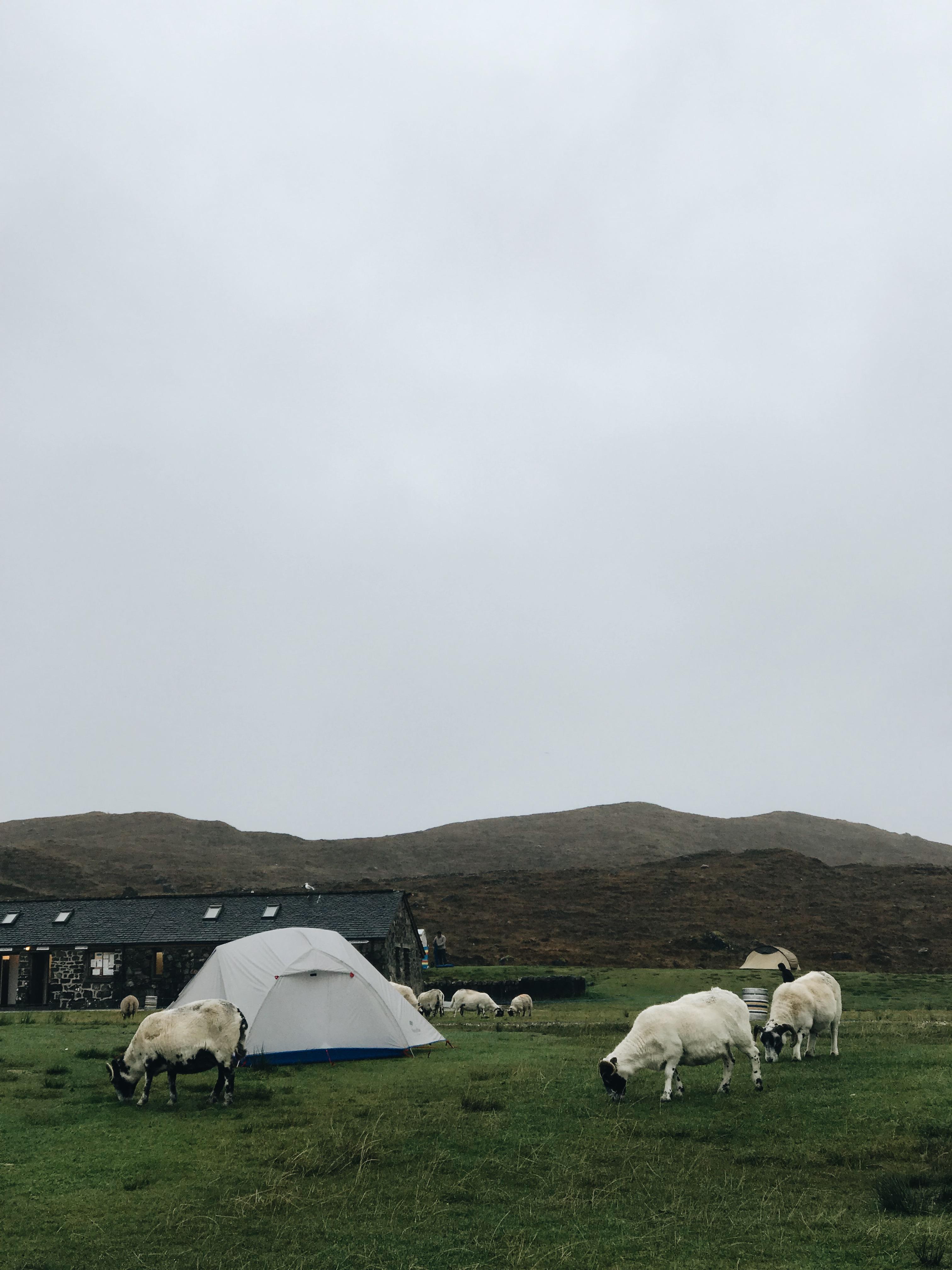 Camping Spot Skye