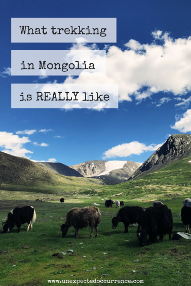 What Trekking in Mongolia is REALLY Like | Trekking in the Altai Mountains |