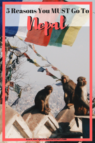 5 Reasons Why You MUST Go To Nepal | If you've been looking for a reason to go to Nepal, here are your 5! Kathmandu, Pokhara, Bardia? All are great options! Read my post about why I loved Nepal, and why you NEED to go!