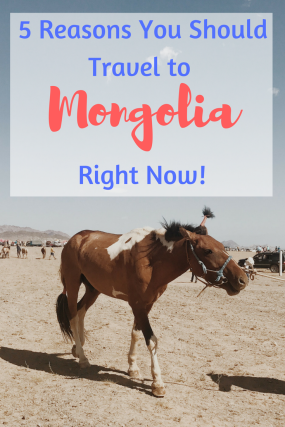 5 Reasons You Should Travel to Mongolia RIGHT NOW | Travel To Mongolia | Altai Mountains | Mongolia